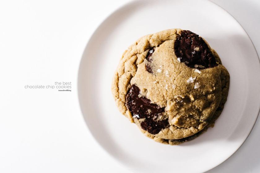 the-best-ever-chocolate-chipe-recipe-4w1
